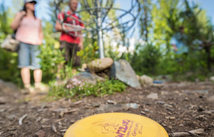 rflett_disc_golf_june2015_-7