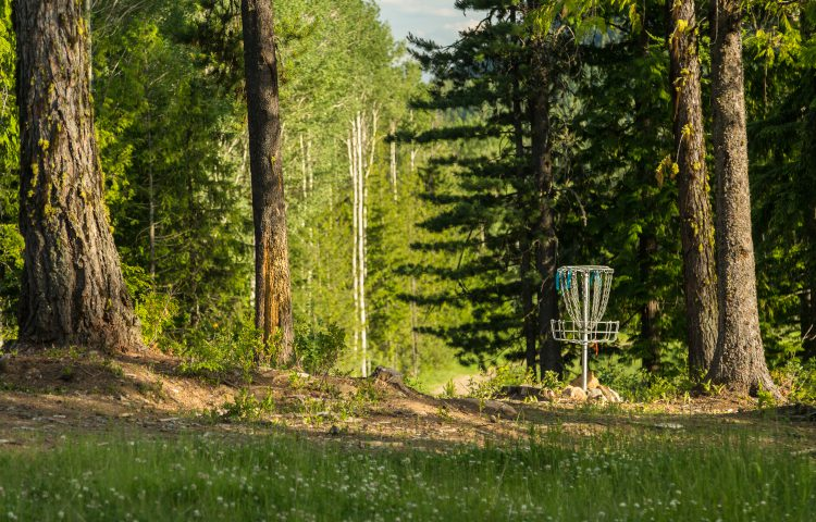 rflett_disc_golf_june2015_-9