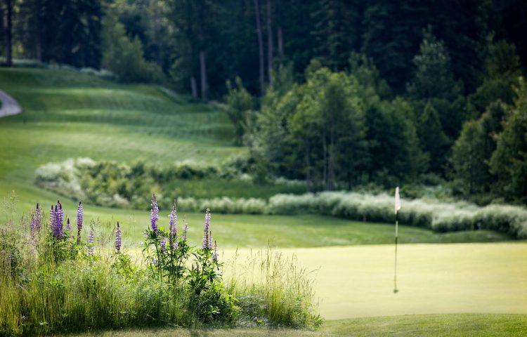 redstone-golf-course16_peachell_photography-copy